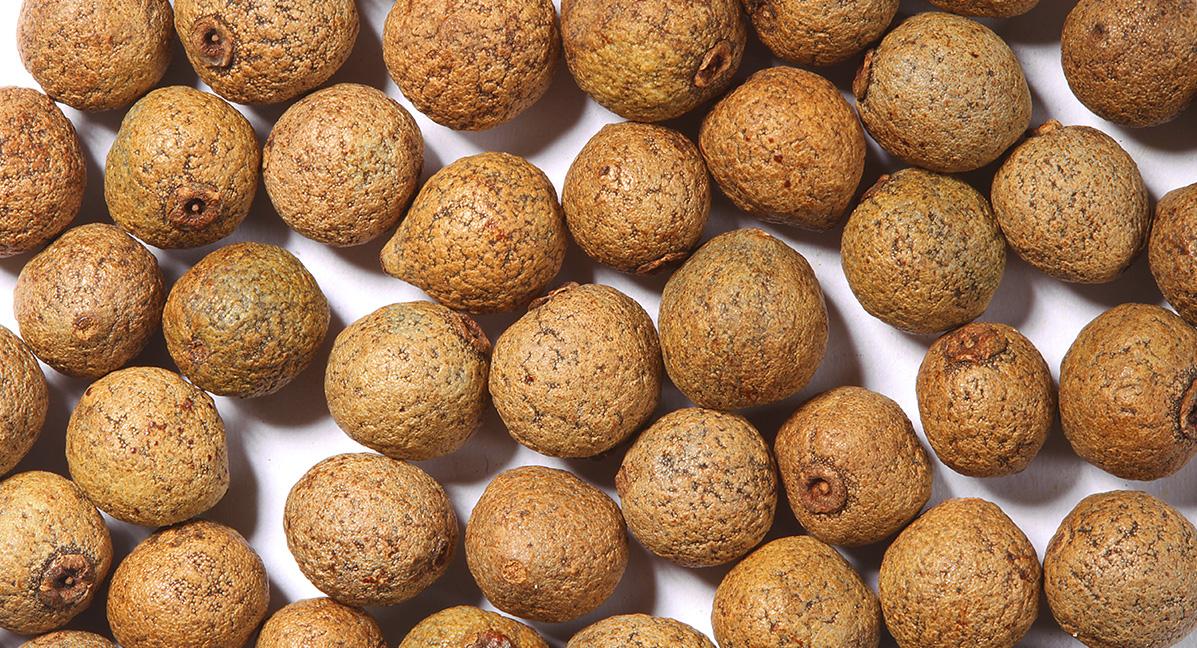 Odorous peas